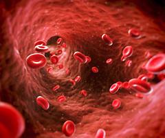 Кровянистые выделения